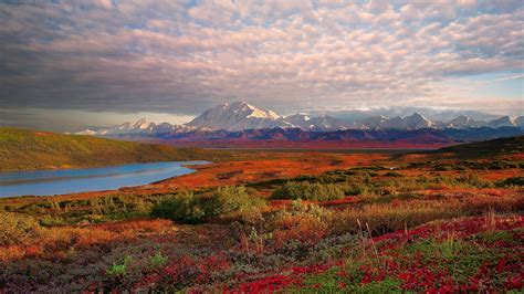 Landscape Denali National Park Alaska Desktop Wallpaper Hd