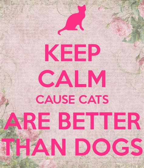 cats are better than dogs keep calm cause cats are better than dogs poster paulina keep calm o matic