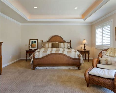 bedroom themes ideas stylid homes simple ceiling designs for small bedrooms home combo