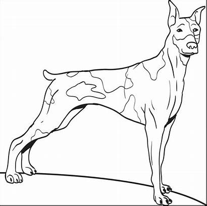 Coloring Dog Printable