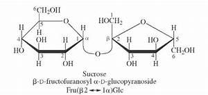 OLIGOSACCHARIDES (Glycoconjugates and Carbohydrates)