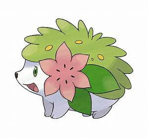 shaymin photo
