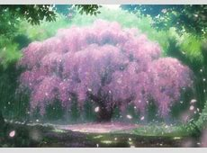 Anime Cherry Blossom Other & Anime Background Wallpapers