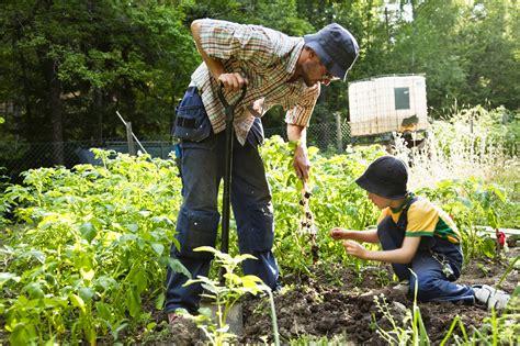 what is a garden organic gardening the home garden