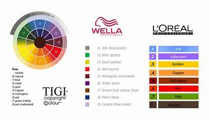 Hair Numbering System Chart Decode Wella Shade