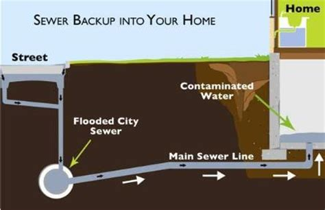 Basement Floor Drain Backing Up Laundry by How To Protect Your Basement From Sewer Backup The