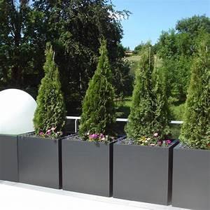 Grand Bac Pour Orchidées : bac plantes cubique hauteur 80 cm bacs et jardins ~ Melissatoandfro.com Idées de Décoration