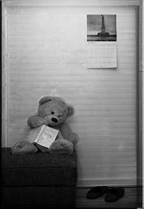 Sad Teddy picture, by BusyBoy for: teddy bears photography ...