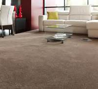 Carpet Designs For Living Room by Living Room Perfect Living Room Carpet Ideas Wayfair Rugs Carpeting Colors