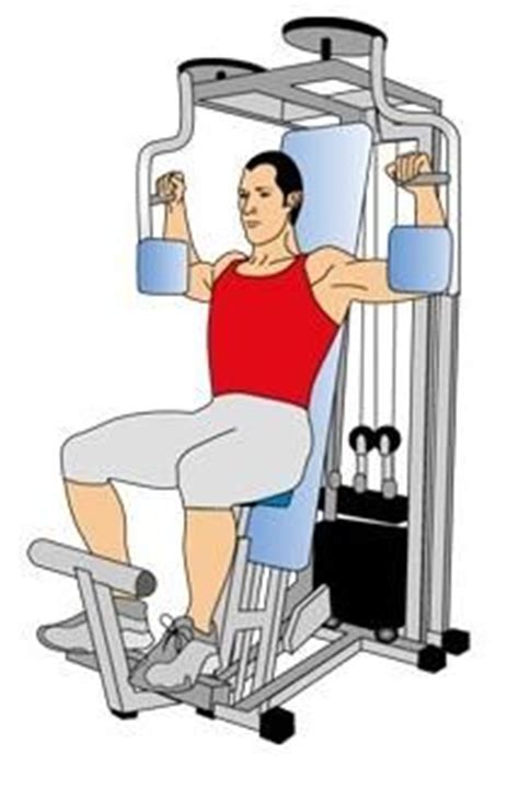 Pec Deck Flys Without Machine by 1000 Images About 10 Most Important Middle Chest