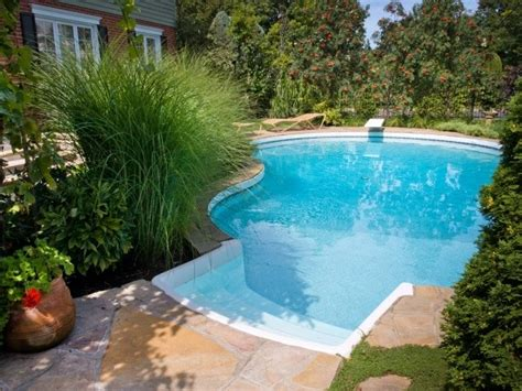 plants to put around a pool tips on greenery around a swimming pool
