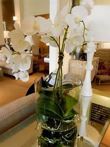 Orchideen Im Glas Dekorieren : wei orchidee wohnzimmer dekoration interieur ~ Watch28wear.com Haus und Dekorationen