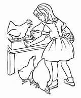 Coloring Farm Egg Chicken Cartoon Take Bulkcolor Bulk Doghousemusic Precious Moments sketch template