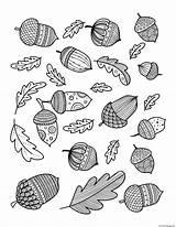 Coloring Acorn Leaf Oak Adults Doodle Autumn Fall Printable sketch template