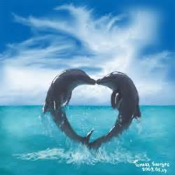 Cute Dolphins Making a Heart
