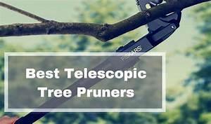 Best Telescopic Long Reach Tree Pruner Reviews Uk