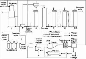 The Pulp Mill Process