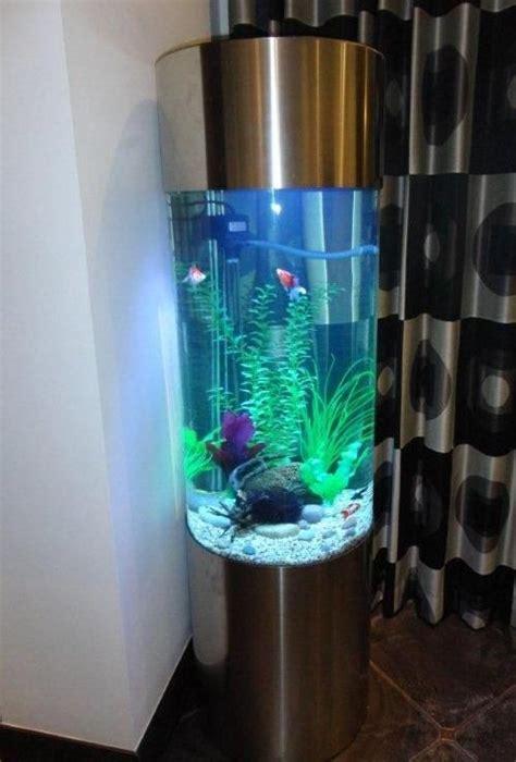 seahorse column aquarium google search aquarium cool
