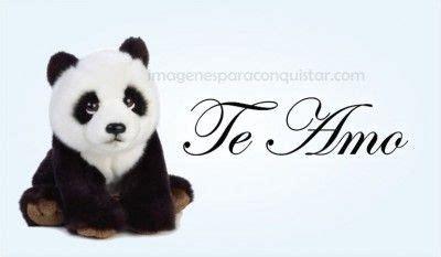 dibujos tiernos enamorar de ositos panda bodas pinterest panda