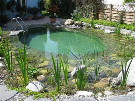Schwimmteiche Für Kleine Gärten by Badeteich Schwimmteich Klein