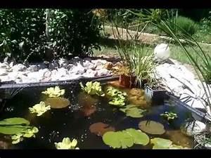 Fontaine Solaire Pour Bassin : linxor pompe eau solaire pour fontaine bassin jardin ~ Dailycaller-alerts.com Idées de Décoration