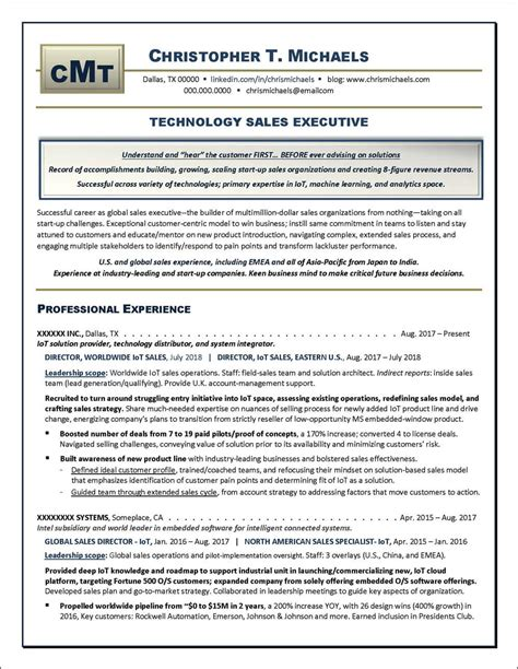 Executive Resume by Technology Sales Executive Resume Exle Distinctive