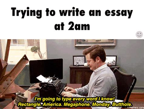 Memes About Writing Papers - image gallery essay meme