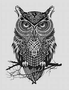 Owl Drawings   Owl drawing, Black and white owl drawing ...