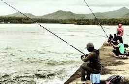 Pendinginan ikan segar (pendinginan dengan es (icing); Arah Mancing Ikan Menurut Situasi Dan Keberuntungan - Primbon Jawa Kuno