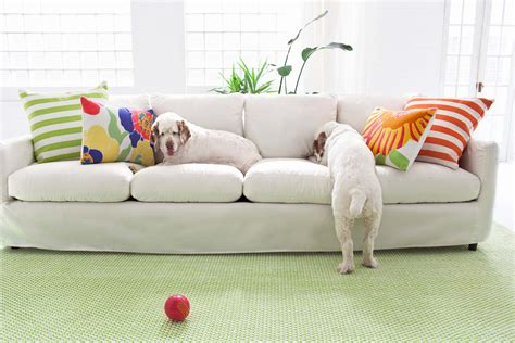 dog friendly sofa fabric pet friendly sofas 15 dog friendly couches perfect for