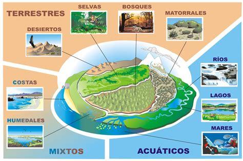 los diferentes tipos de ecosistemas