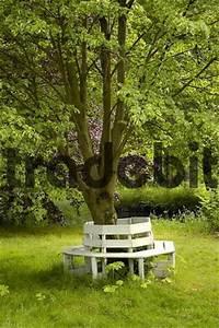 Bank Um Baum : gartenbank bank im garten um baum runterladen natur ~ Eleganceandgraceweddings.com Haus und Dekorationen