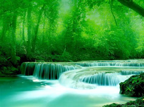 wallpaper river water rocks trees greenery  wallpapers  beautiful wallpapers widescreen hd   wallpaperscom