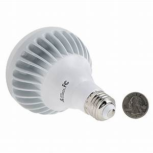 Br led bulb w dimmable flood light
