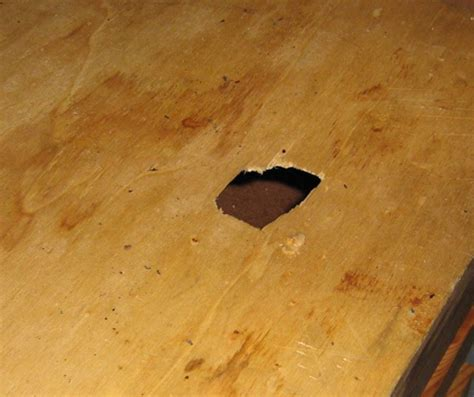 How To Repair Damaged Furniture  Groomed Home