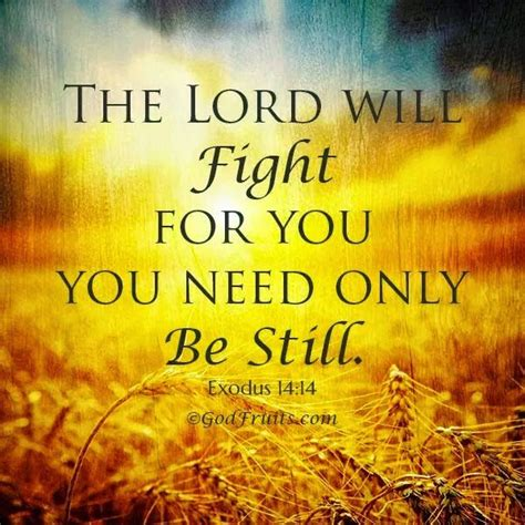 the sins of scripture the battle is the lord s unshaken