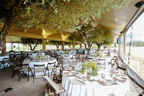 una boda en el campo  olivos debajo de la carpa bc carpas