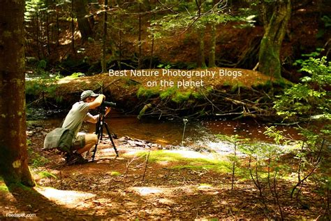 top  nature photography blogs websites newsletters