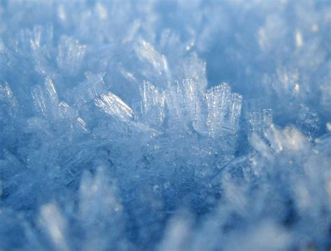 nature photography ice crystals  macro