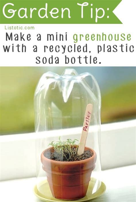 20 insanely clever gardening tips and ideas16 jpg