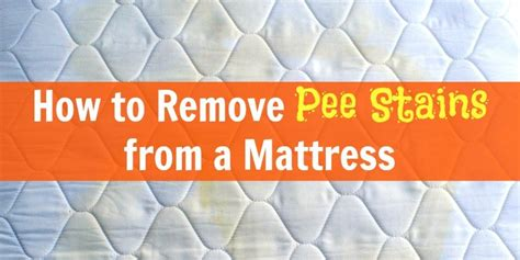 how to remove urine stains from mattress free dishwasher clean sign printable