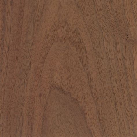walnut wood black walnut the wood database lumber identification hardwood
