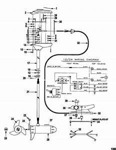 35 Trolling Motor Wiring Diagram