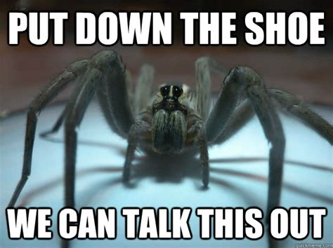 Sad Spider Meme - huge spider memes image memes at relatably com