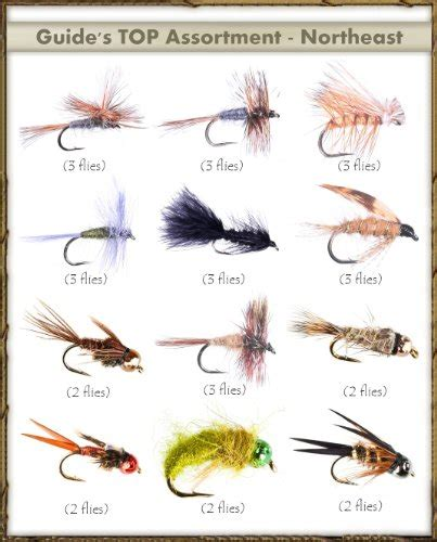 top selling flies guides top assortment northeast