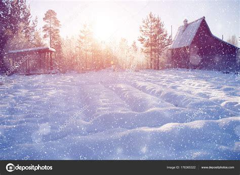 Winter wonderland scene background landscape Trees