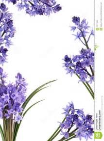 Blue Bell Flower Border Clip Art