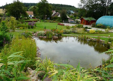 chambre d hote sarthe au jardin d 39 hôte jardin aquatique spécialiste en bassin