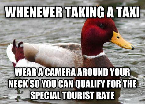 Mallard Duck Meme - livememe com malicious advice mallard