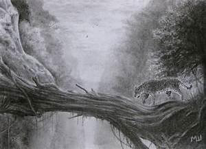 Image Gallery jungle pencil drawings